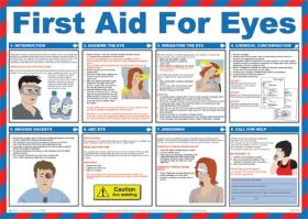 First aid for eyes poster. 420x590mm